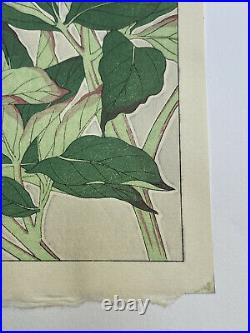 Japanese Mid C. Floral woodblock print Peonies Shodo Kawarazaki