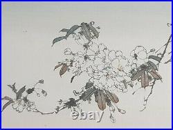 Japanese Tsukioka Kogyo Woodblock Print. Plum blossom & Moon