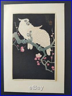 Japanese Woodblock Print Shoson (Koson) vintage print. Parrots and plumb flower