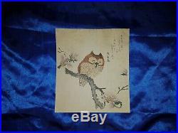 Japanischer-Farbholzschnitt- Old Japanese woodblock print Kubo Shunman Owl