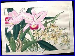 KONAN European Flowers Woodcut album KUSABANA ZUFU SE Woodblock print Book #5