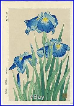 Kawarazaki Shodo Vintage JAPANESE WOODBLOCK Flower PRINT Iris