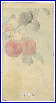 Koson Ohara, Bird and Persimmon, Nature, Original Japanese Woodblock Print