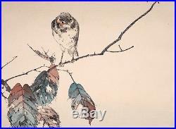 Rare and Authentic Seitei (Shotei) Japanese Woodblock Print SEITEI KACHÔ-CHÔ
