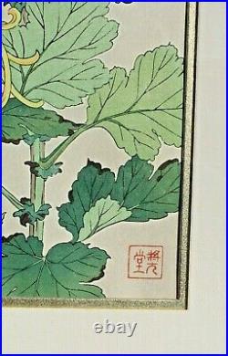 SHODO KAWARAZAKI Japanese Woodblock Print CRYSANTANTHEMUMS Collectors Guild COA