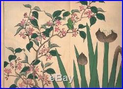 Shikinohana 1907 Woodblock Print Flowers Book by Sakai Hoitsu Original Antique