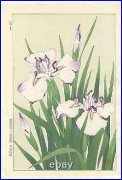 Shodo Kawarazaki, Iris, Flower, Botanical, Original Japanese Woodblock Print