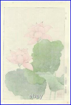 Shodo Kawarazaki, Pink Lotus, Botanical, Art, Original Japanese Woodblock Print